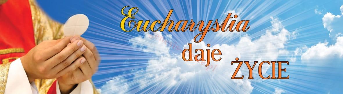 """Znalezione obrazy dla zapytania """"eucharystia daje życie"""